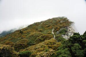 五岩峰部分路段
