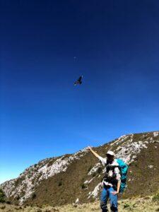 大水窟稜線上放風箏