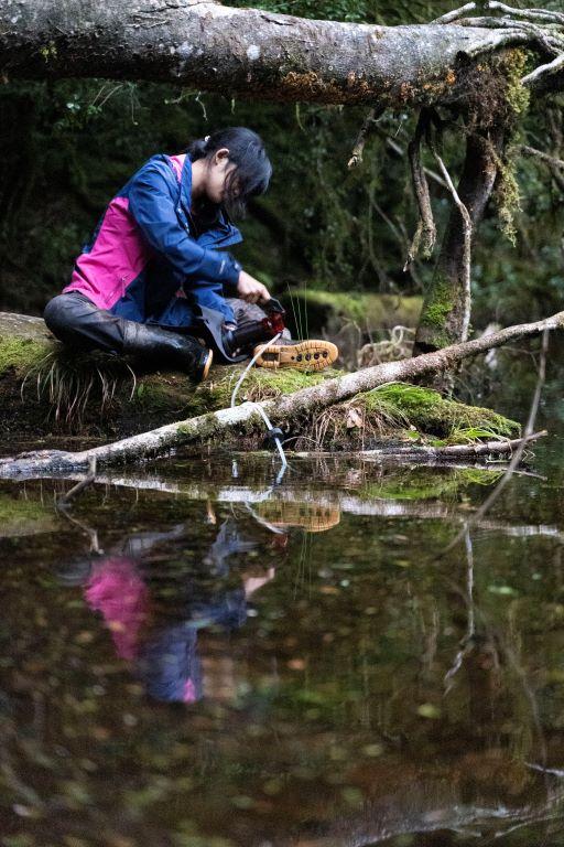 玫瑰池取水