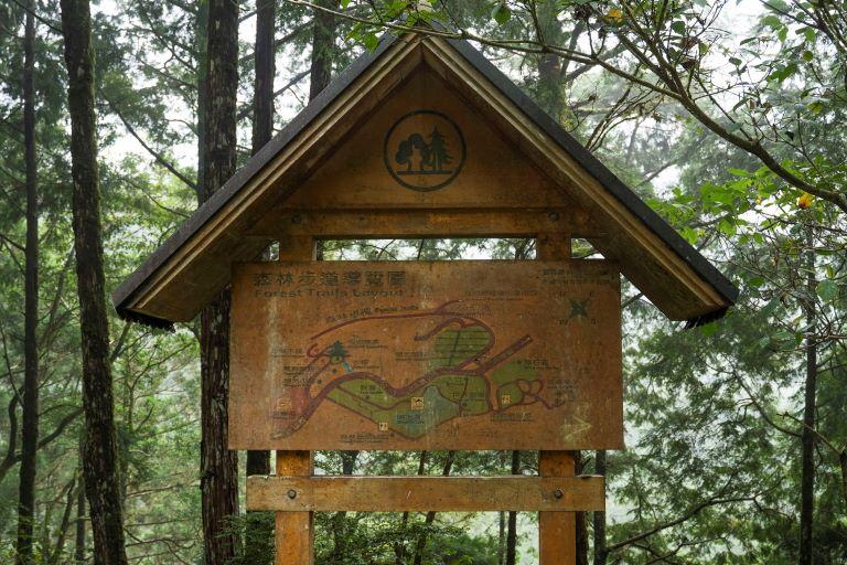 明池森林步道